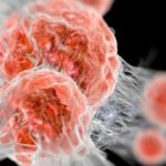 Nobel prize for medicine goes to cancer therapy