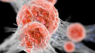Cancerous cells
