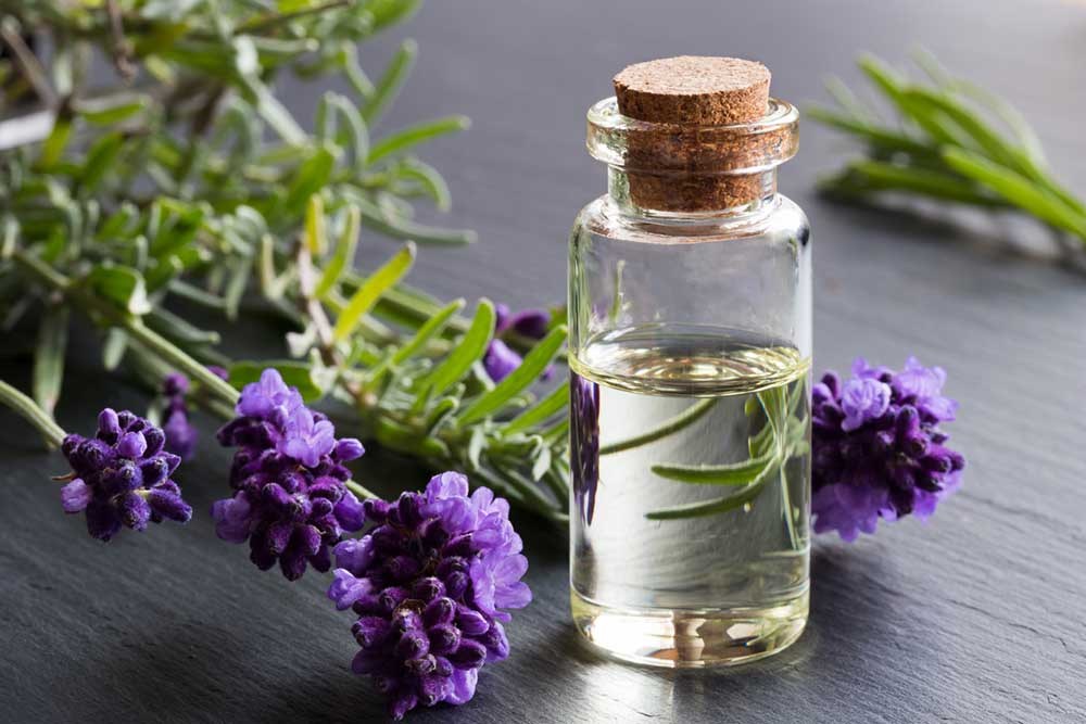 How to relieve stress without drugs - the expert's guide-3-natural-ways-to-beat-stress-lavender