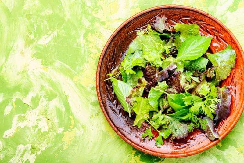 healthy-green-salad